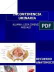 incontinenciaurinaria.pptx