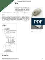 Ratón.pdf