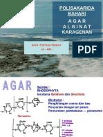 Alginiphyta
