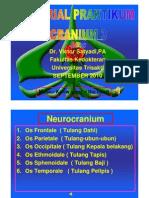 PDF Tutorial Praktikum Cranium 9 2010