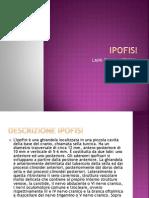 AMILOIDOSI CRISTALLIFORME-  IPOFISI