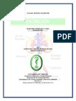 TALLER SISTEMA EXCRETOR MARYORIS.pdf