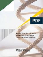Administracion_eficiente_activos_software.pdf