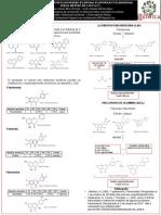 iPoster flavonoides terminado .pdf
