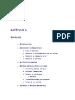 01.Matrices.pdf