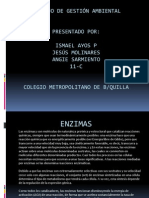 Enzimas ismael3.pptx