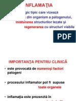 6. INFLAMAŢIA II.ppt