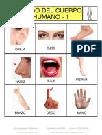 Bingo fotos el cuerpo CLASIF.pdf