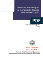 DQANB_Desarrollos metodologicos en cromatografia de gases.pdf