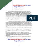 IDEA Project Report