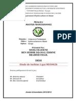 Master_MOSLI_BENSEDDIK_BRAHIMI.pdf