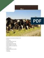 Interpretación del análisis del ensilaje de forrajeras..pdf