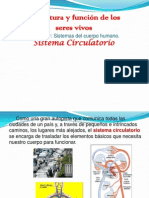 sistema circulatorio.ppt