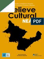 NEA_web.pdf