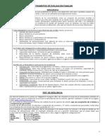 resilencia.pdf