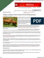 Tolima conformó mesa técnica de raza Romosinuano _ Contexto Ganadero.pdf