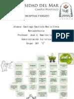 Mapa Conceptual final.pdf