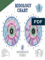 iridology-chart.pdf
