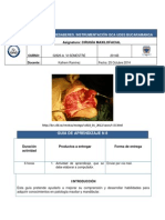 GUIA N8.pdf