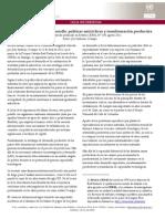 José A. Ocampo, Políticas anticíclicas en la economía.pdf