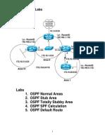 MultiAreaOSPF-RicksLabs.pdf