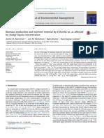 amb2-1.pdf