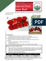FICHA TECNICA FRESA camino-real.pdf