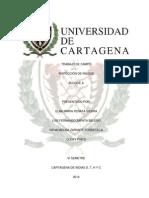 TRABAJO DE CAMPO SALUD OCUPACIONAL (TRABAJO FINAL)23.docx