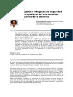 MODELO SGI EN ELECTRICIDADA.pdf
