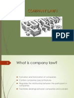 Types of Companies and Promoters