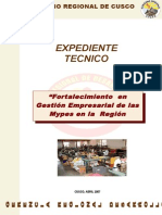 EXPEDIENTE TEC mypes.doc
