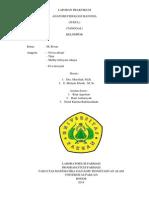 FORMAT COVER LAPRAK ANFISMAN.docx