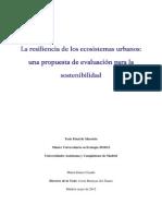 TEMA DE INVESTIGACION PROPUESTA DE EVALUACION RESILIENCIA.pdf