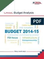 Union Budget Analysis CRISIL 110714