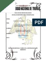 cabrito informe oficial.docx