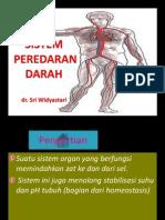 SISTEM PEREDARAN DARAH.pptx