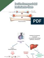patologias.pdf