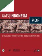 Indonesia Report
