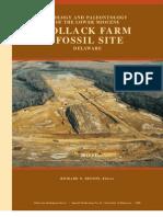 Pollack Farm Fossil Site Delaware Shark Teeth Mioceen