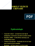 Tumori vezicale Curs