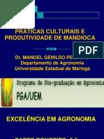 VARIEDADES E MATERIAL DE PLANTIO DE MANDIOCA.pdf