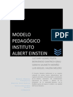 PEI INSTITUTO ALBERT EINSTEIN-rev.bsg.docx