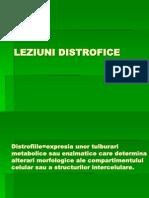LP2- distrofii.ppt