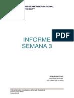INFORME 3.pdf