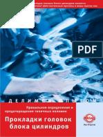 Motorschaden_ru.pdf