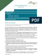 2012S2AzeiteFI.pdf