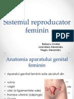 Sistemul reproducator.pptx
