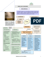 64_Orinaespumosa.pdf