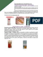 Pruebas bioquimicas E. coli.docx