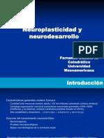neuroplasticidad-neurodesarrllo-y-funciones-cognitivo-emocionales-67.ppt